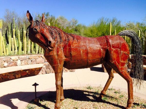 What to do in Tucson : Tohono Chul